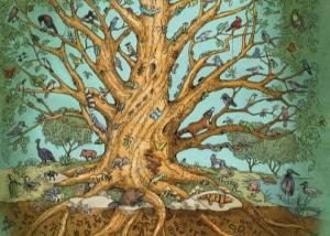 treeoflifesnapshot